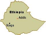 bonga-map