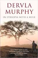 in-ethiopia-mule